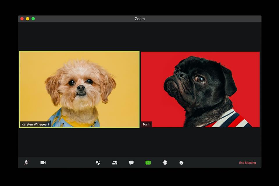 Zoom画面の固定方法