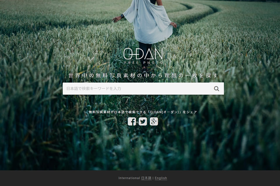 画像検索サイト「O-DAN」