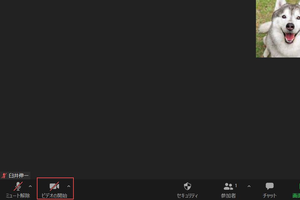 Zoom_ビデオの開始アイコンを確認